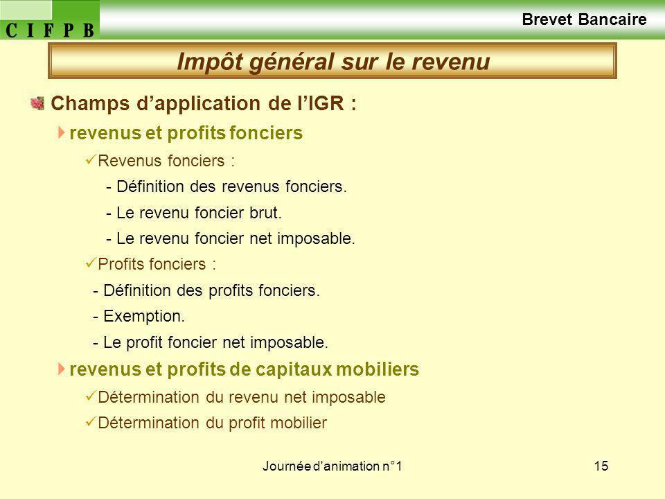 Journée d'animation n°115 Champs dapplication de lIGR : revenus et profits fonciers Revenus fonciers : - Définition des revenus fonciers. - Le revenu