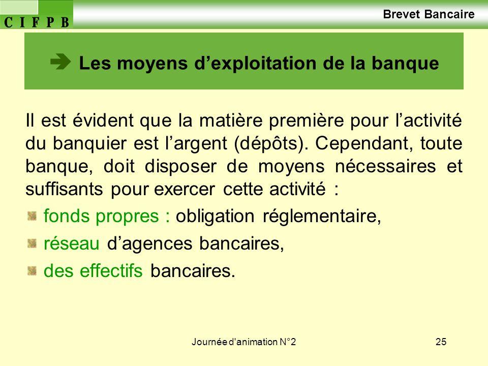Journée d animation N°225 Les moyens dexploitation de la banque Il est évident que la matière première pour lactivité du banquier est largent (dépôts).