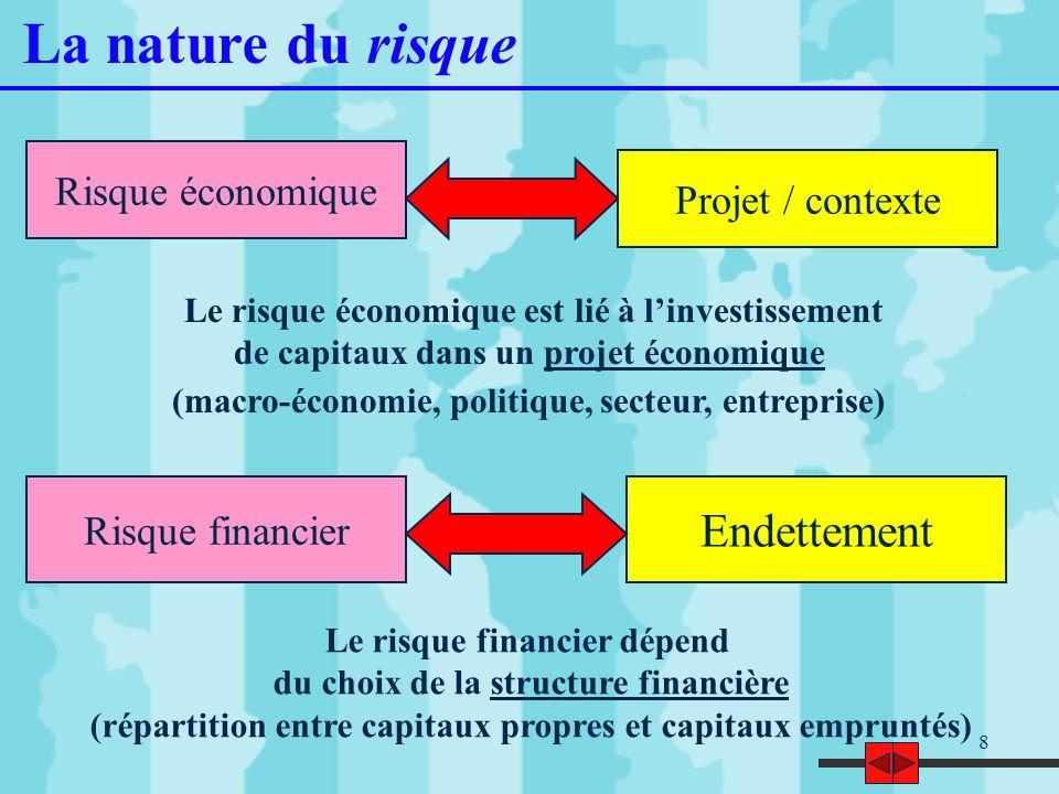 8 La nature du risque Le risque économique est lié à linvestissement de capitaux dans un projet économique (macro-économie, politique, secteur, entrep