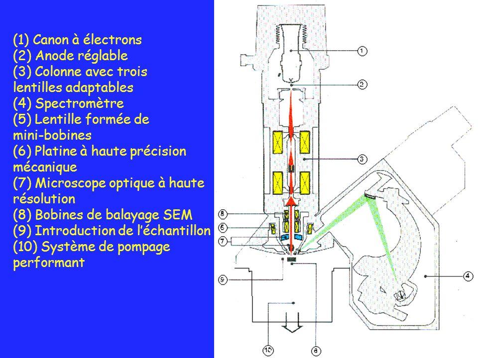 (1) Canon à électrons (2) Anode réglable (3) Colonne avec trois lentilles adaptables (4) Spectromètre (5) Lentille formée de mini-bobines (6) Platine