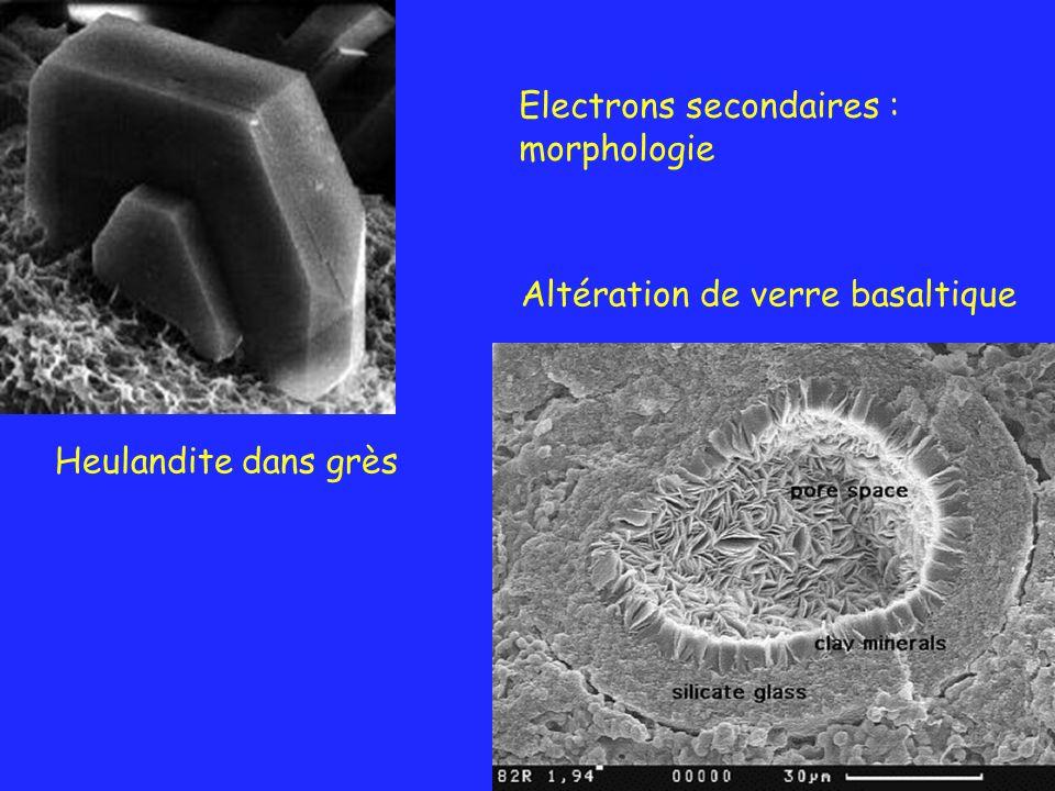 Heulandite dans grès Altération de verre basaltique Electrons secondaires : morphologie