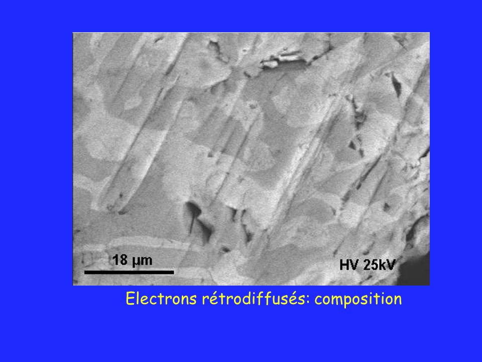 Electrons rétrodiffusés: composition
