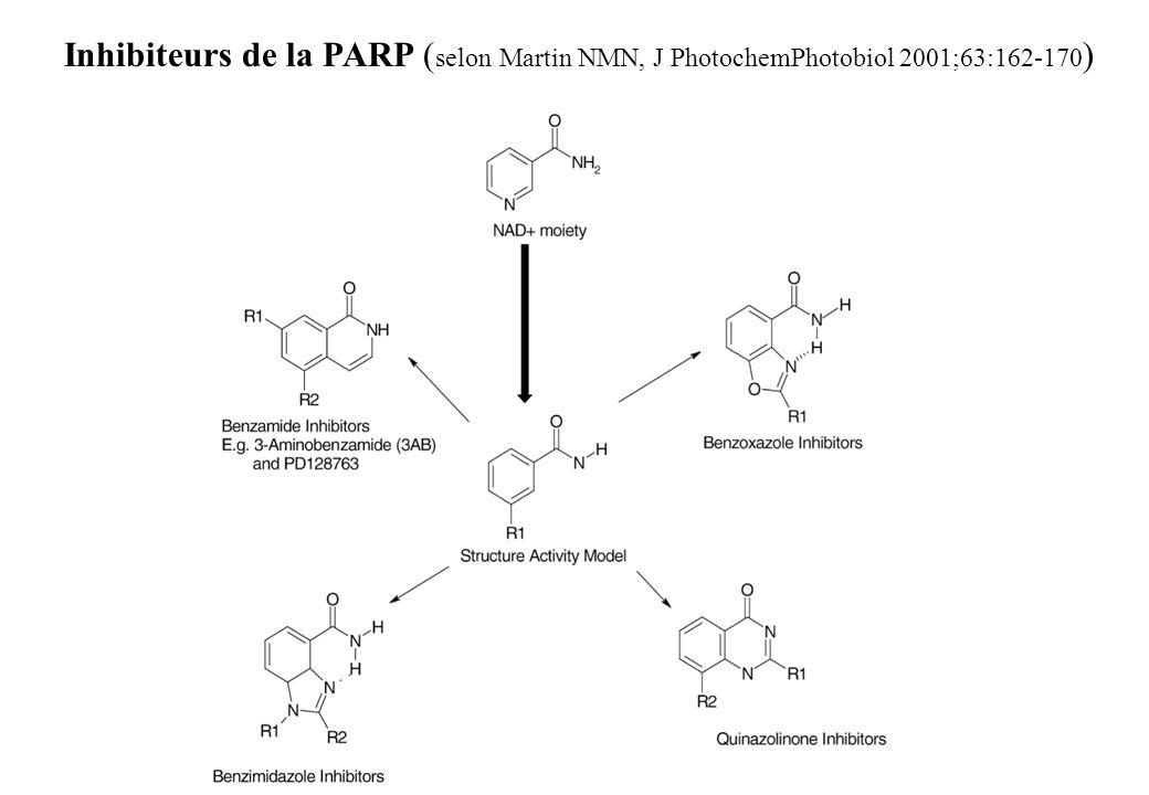 Inhibiteurs de la PARP ( selon Martin NMN, J PhotochemPhotobiol 2001;63:162-170 )