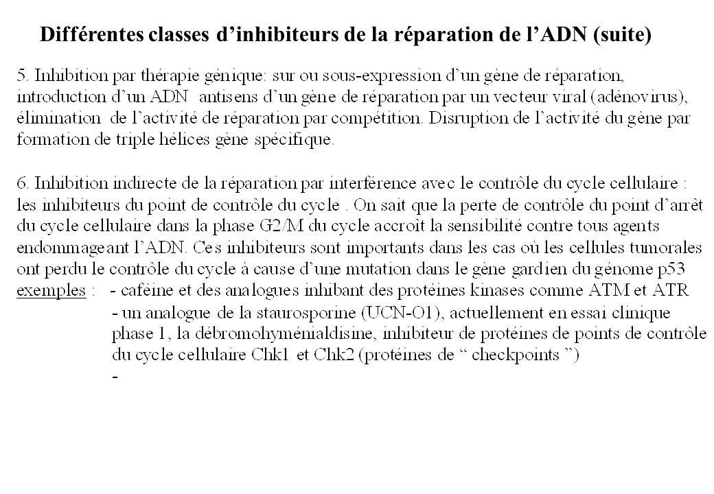 Différentes classes dinhibiteurs de la réparation de lADN (suite)
