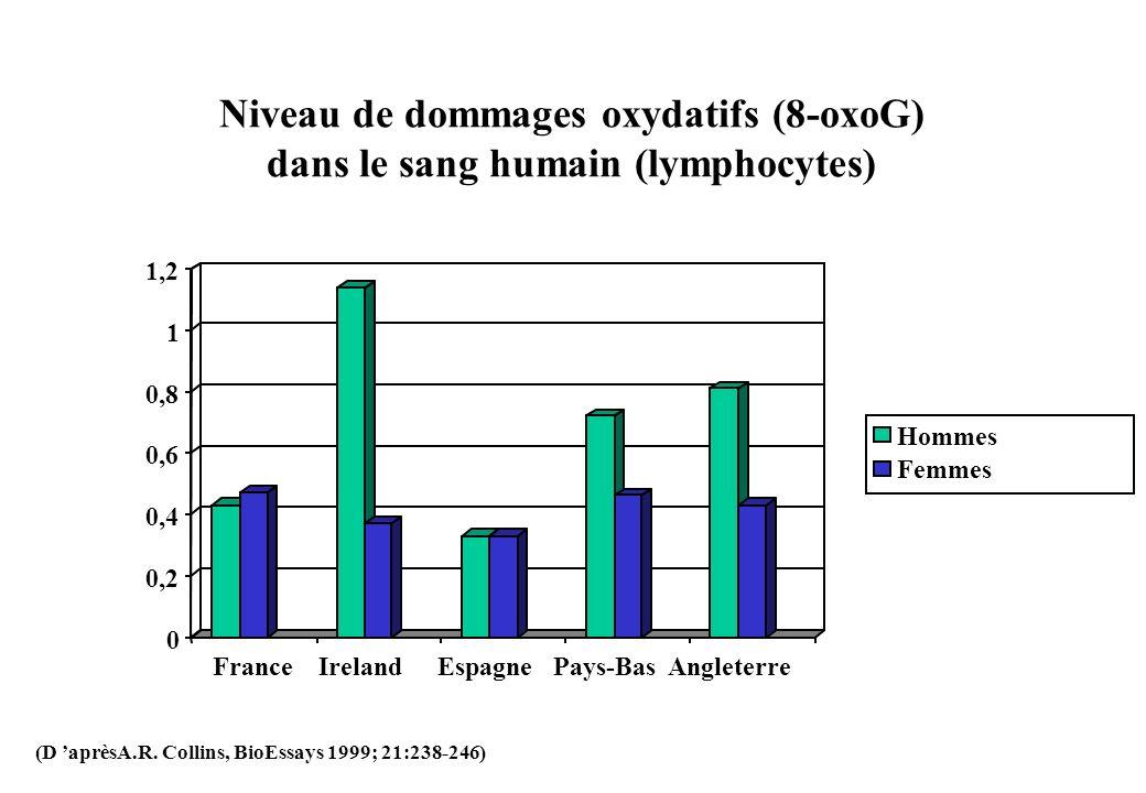 Niveau de dommages oxydatifs (8-oxoG) dans le sang humain (lymphocytes) 0 0,2 0,4 0,6 0,8 1 1,2 FranceIreland Espagne Pays-Bas Angleterre Hommes Femme