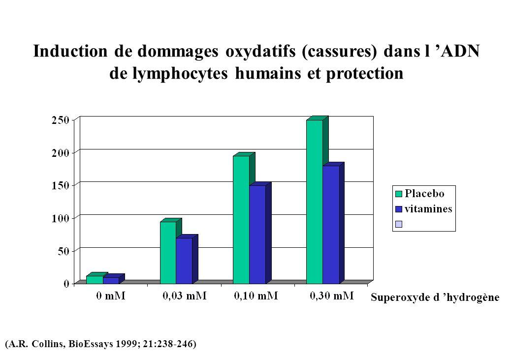 Induction de dommages oxydatifs (cassures) dans l ADN de lymphocytes humains et protection Superoxyde d hydrogène (A.R. Collins, BioEssays 1999; 21:23