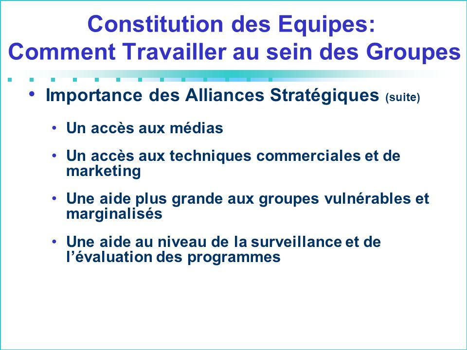 Importance des Alliances Stratégiques (suite) Un accès aux médias Un accès aux techniques commerciales et de marketing Une aide plus grande aux groupe