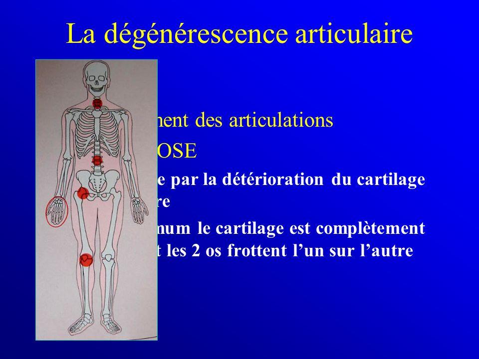 La dégénérescence articulaire Vieillissement des articulations = ARTHROSE –est causée par la détérioration du cartilage articulaire –au maximum le car