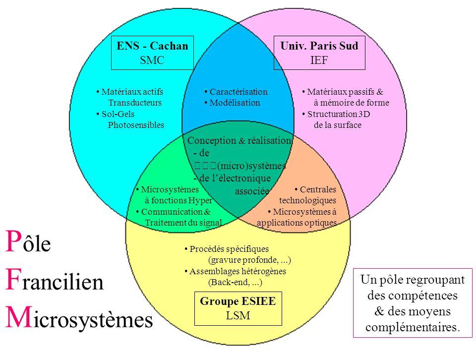 Objectifs du PFM Regroupement des compétences et des moyens Appels doffre des instances régionales nationales européennes Conventions spécifiques avec des industriels Entreprendre des programmes de recherche plus ambitieux Définir une politique dinvestissement concertée Organiser la formation en microsystèmes Concevoir et étudier la faisabilité de démonstrateurs innovants PFM