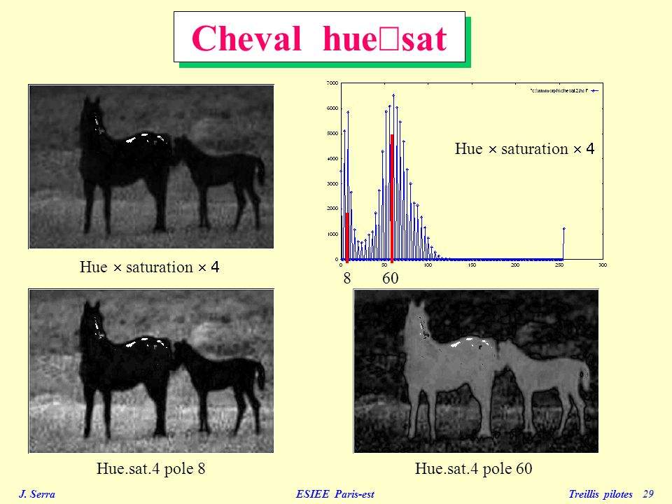 J. Serra ESIEE Paris-est Treillis pilotes 29 Hue saturation Hue.sat.4 pole 8Hue.sat.4 pole 60 Cheval hue sat 860 Hue saturation