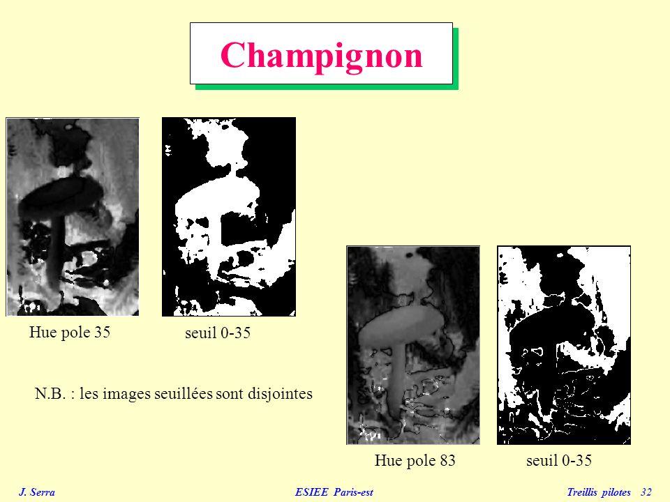 J. Serra ESIEE Paris-est Treillis pilotes 32 Champignon Hue pole 35 Hue pole 83 seuil 0-35 N.B. : les images seuillées sont disjointes