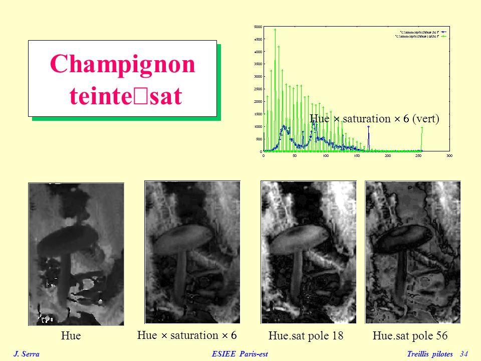 J. Serra ESIEE Paris-est Treillis pilotes 34 Champignon teinte sat Hue Hue saturation Hue saturation (vert) Hue.sat pole 18Hue.sat pole 56