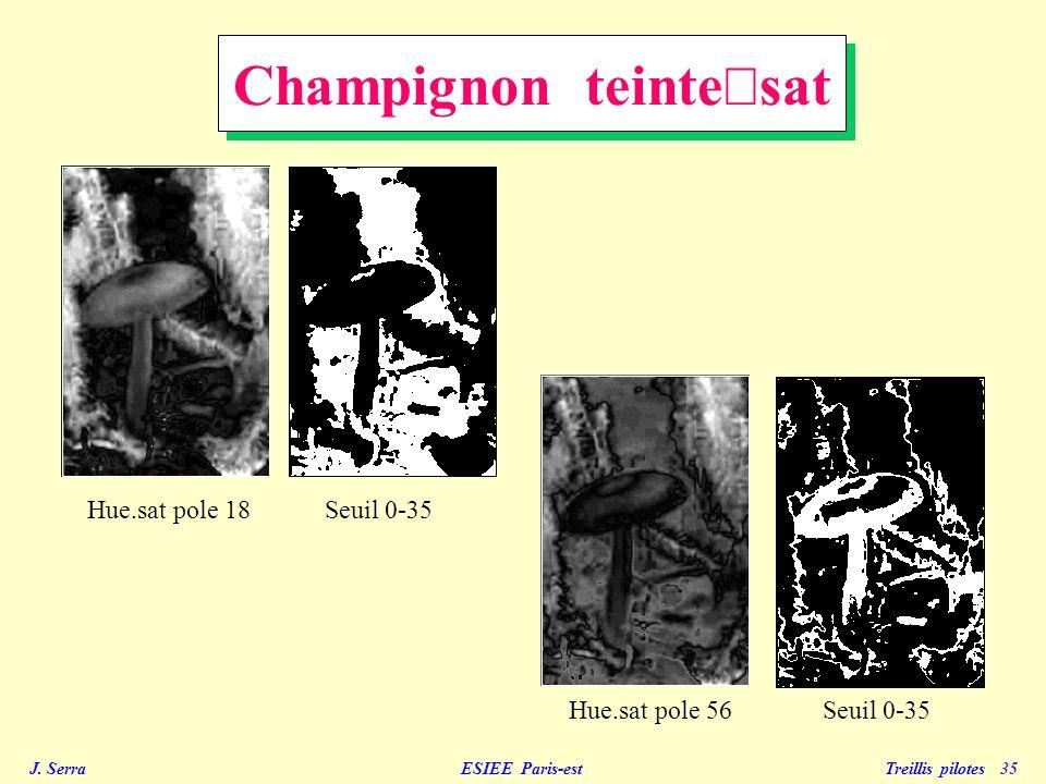 J. Serra ESIEE Paris-est Treillis pilotes 35 Hue.sat pole 18 Hue.sat pole 56Seuil 0-35 Champignon teinte sat