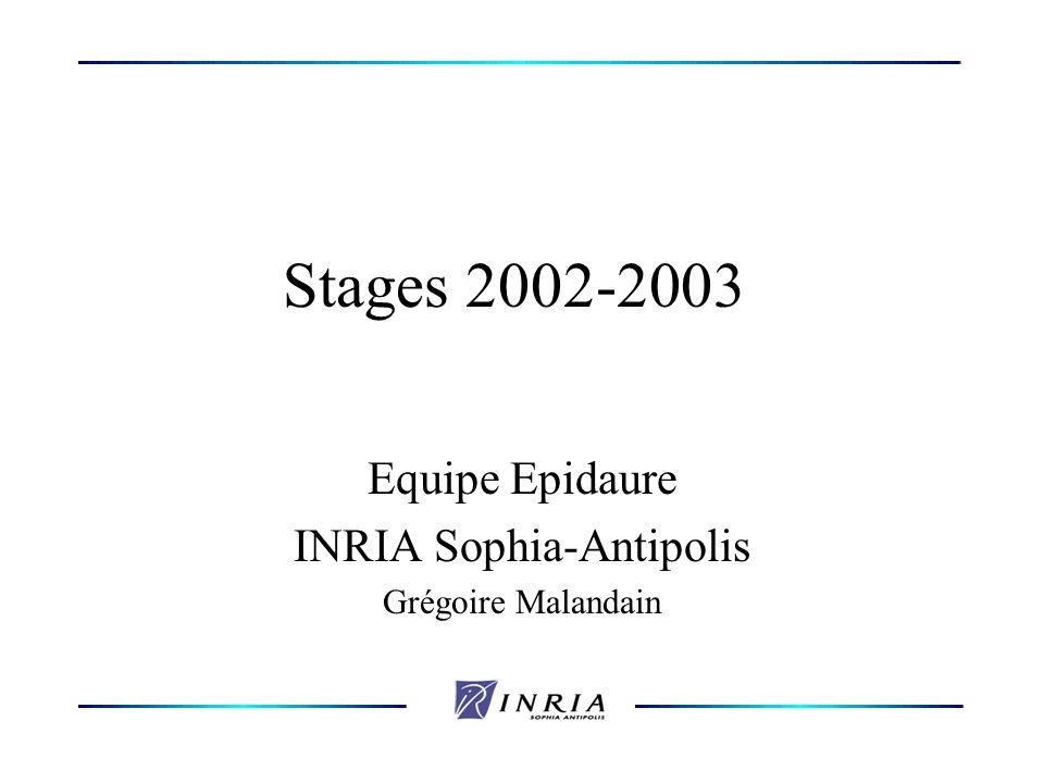 Stages 2002-2003 Equipe Epidaure INRIA Sophia-Antipolis Grégoire Malandain