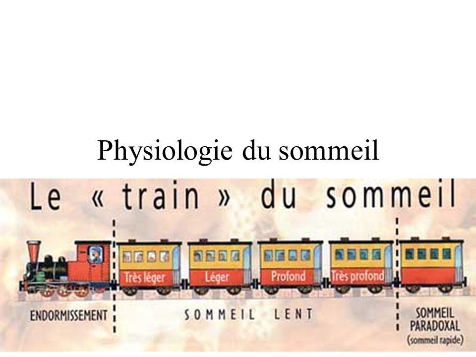 Les trains du sommeil Le sommeil lent profond survient essentiellement au cours de la 1ère partie de la nuit.