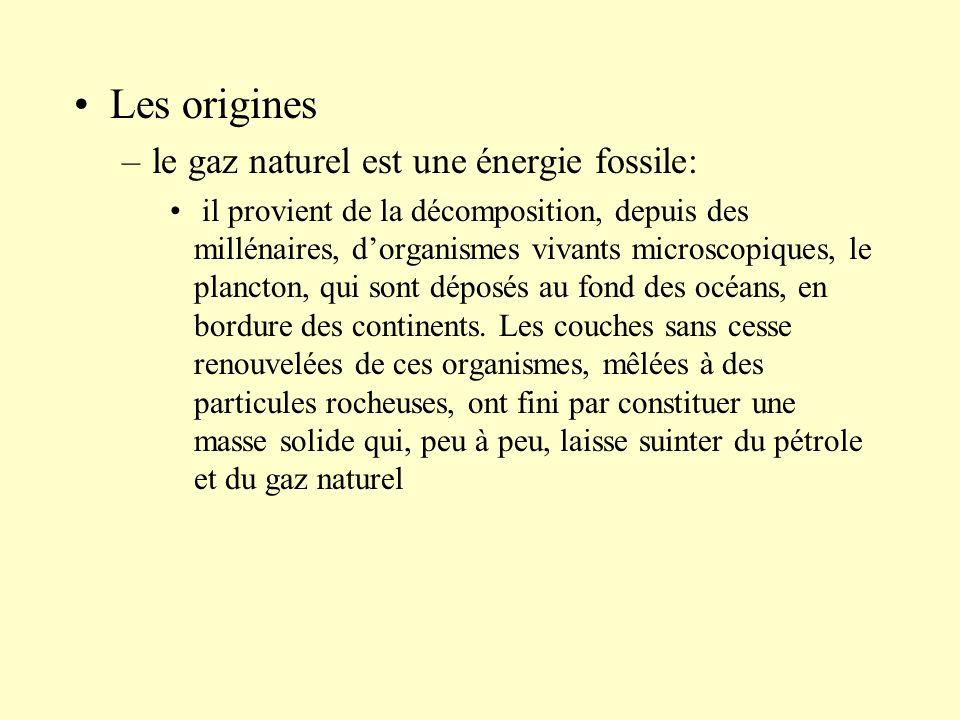 –le gaz naturel est une énergie fossile: il provient de la décomposition, depuis des millénaires, dorganismes vivants microscopiques, le plancton, qui