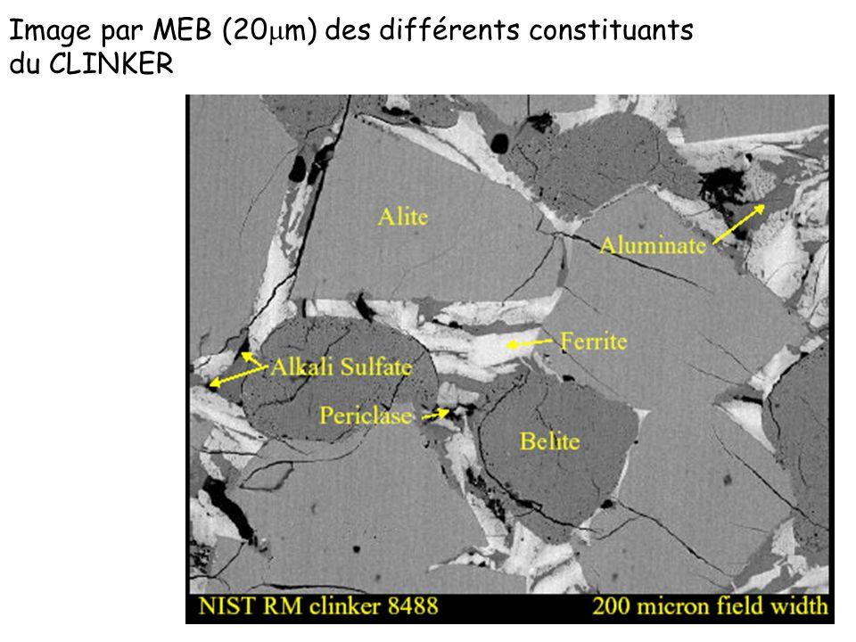 Image par MEB (20 m) des différents constituants du CLINKER