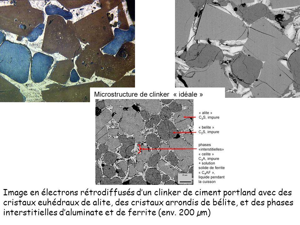 Image en électrons rétrodiffusés dun clinker de ciment portland avec des cristaux euhédraux de alite, des cristaux arrondis de bélite, et des phases i