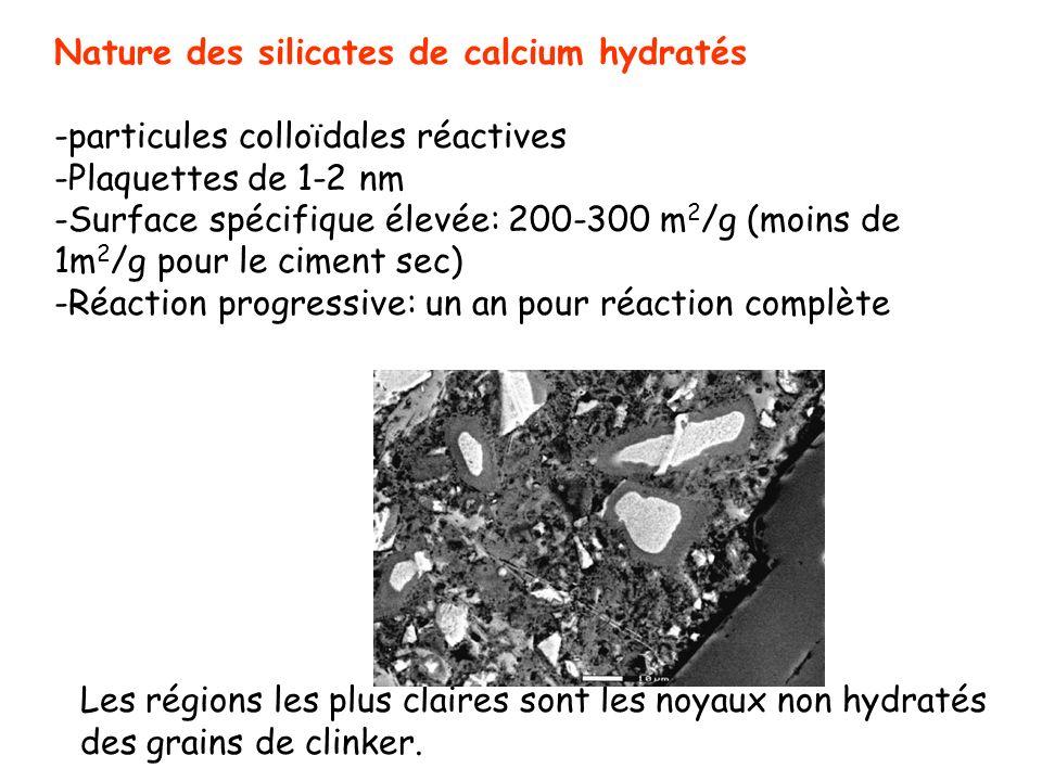 Nature des silicates de calcium hydratés -particules colloïdales réactives -Plaquettes de 1-2 nm -Surface spécifique élevée: 200-300 m 2 /g (moins de