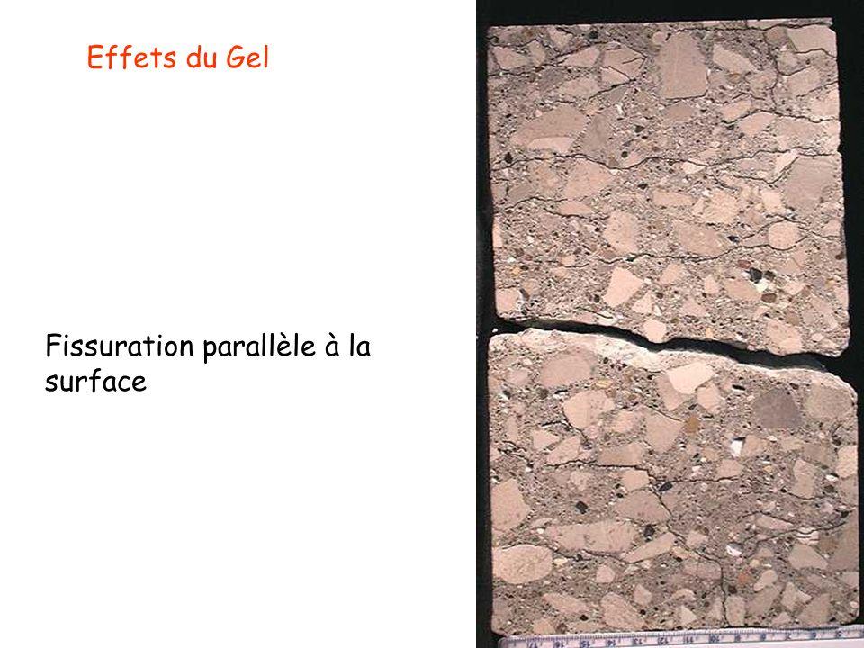 Effets du Gel Fissuration parallèle à la surface
