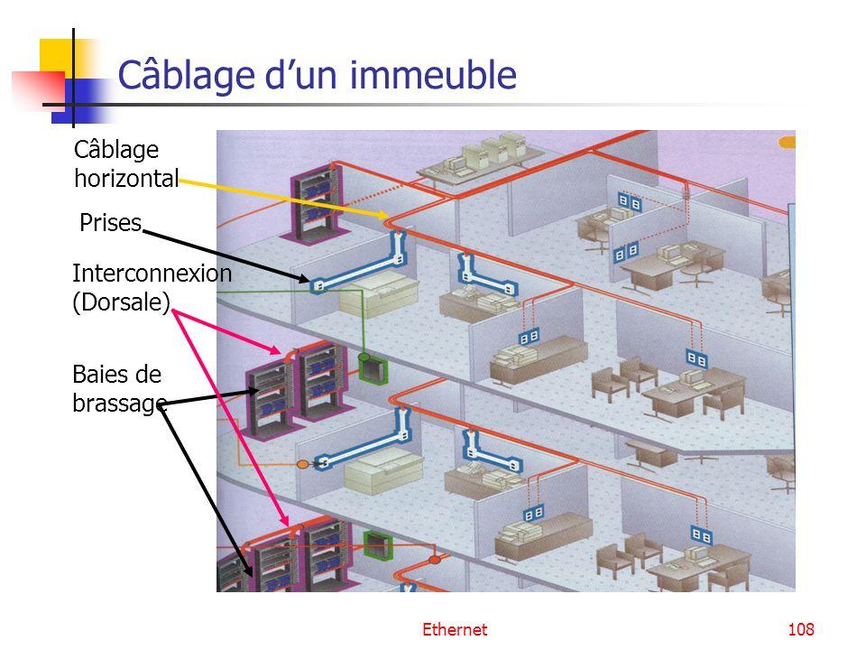 Ethernet108 Câblage dun immeuble Baies de brassage Câblage horizontal Interconnexion (Dorsale) Prises
