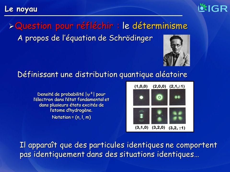 Le noyau Question pour réfléchir : le déterminisme Question pour réfléchir : le déterminisme A propos de léquation de Schrödinger Densité de probabili