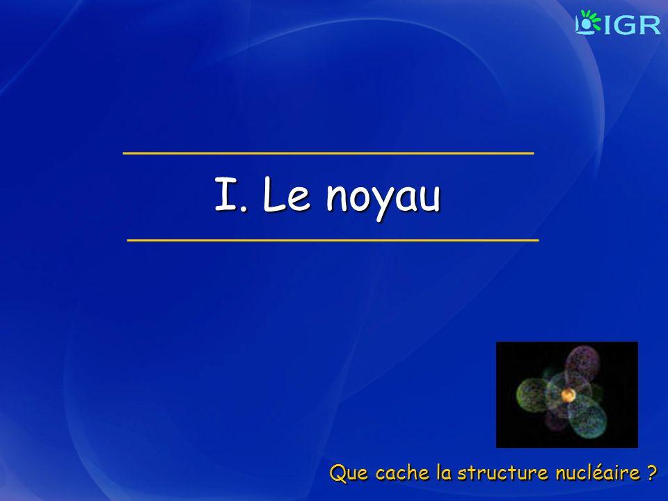 I. Le noyau Que cache la structure nucléaire ?