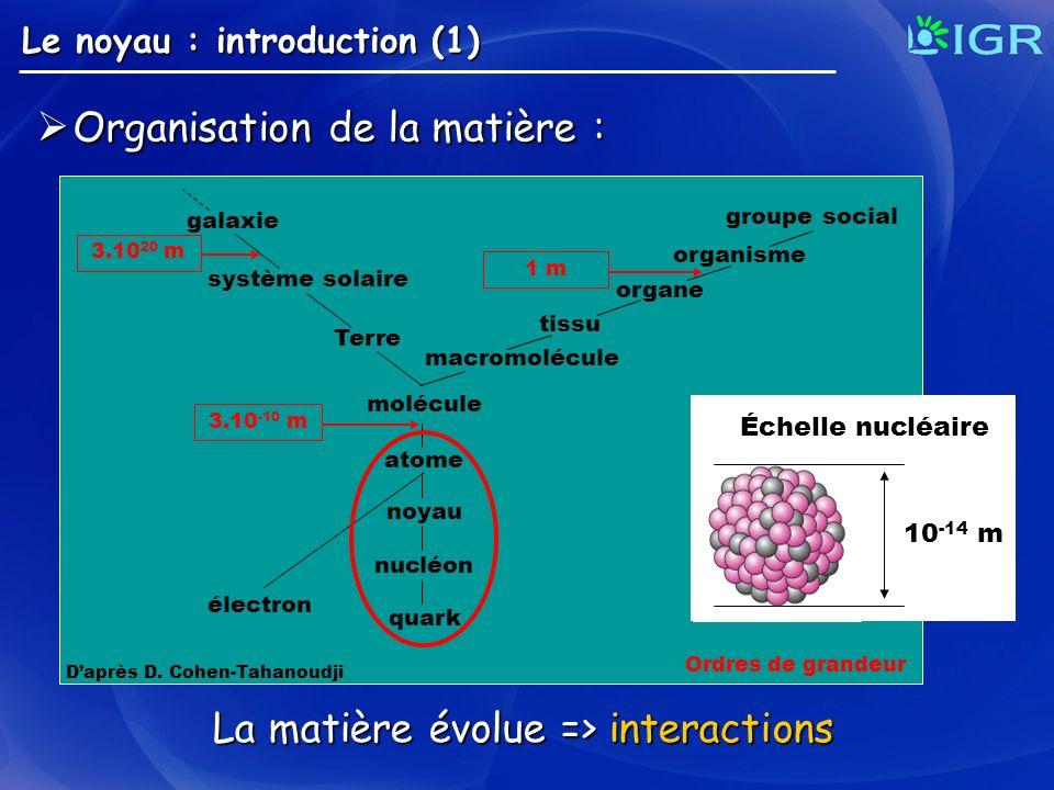 molécule atome noyau nucléon quark électron Terre système solaire macromolécule tissu organe organisme groupe social galaxie Échelle nucléaire 10 -14