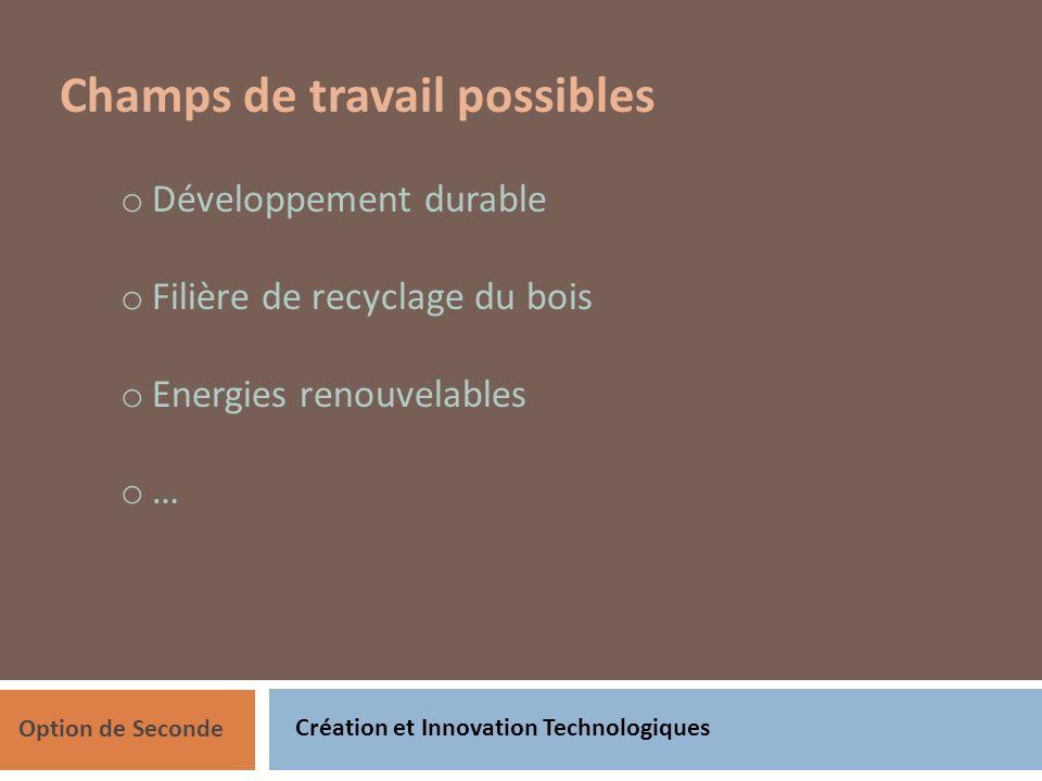 Création et Innovation Technologiques Option de Seconde Champs de travail possibles o Développement durable o Filière de recyclage du bois o Energies renouvelables o …