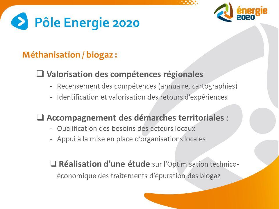 Méthanisation / biogaz : Valorisation des compétences régionales - Recensement des compétences (annuaire, cartographies) - Identification et valorisat