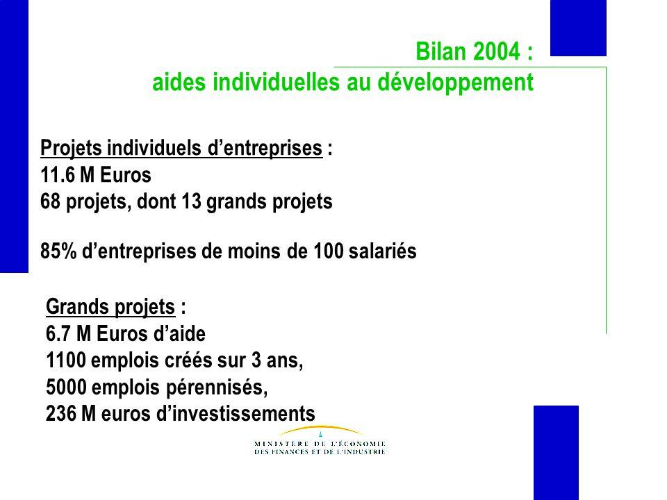 Bilan 2004 : aides individuelles au développement Projets individuels dentreprises : 11.6 M Euros 68 projets, dont 13 grands projets Grands projets : 6.7 M Euros daide 1100 emplois créés sur 3 ans, 5000 emplois pérennisés, 236 M euros dinvestissements 85% dentreprises de moins de 100 salariés