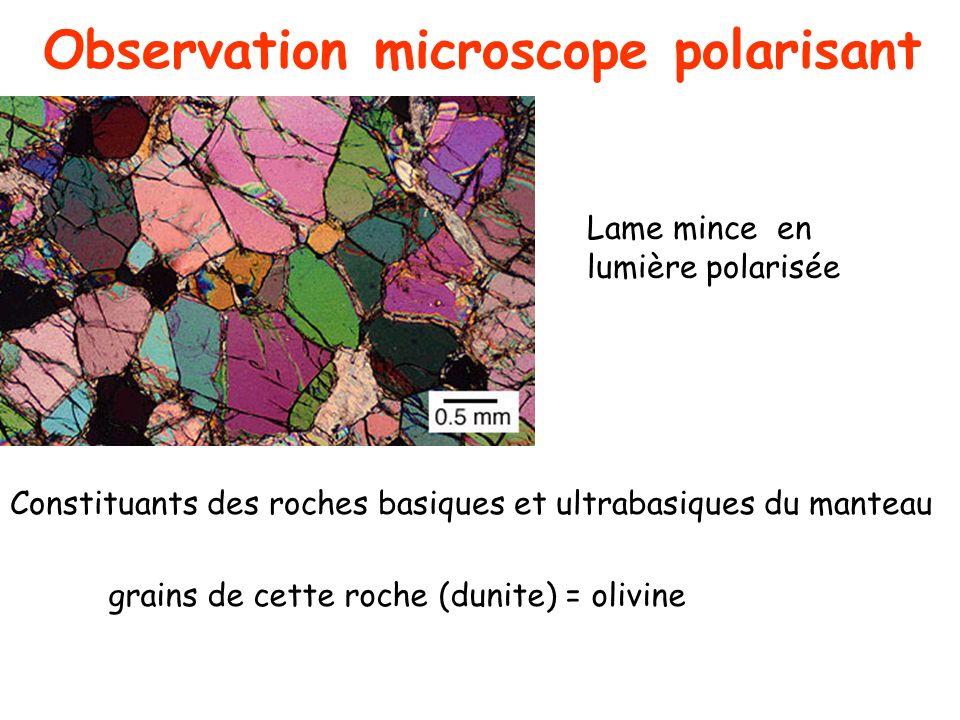 grains de cette roche (dunite) = olivine Constituants des roches basiques et ultrabasiques du manteau Lame mince en lumière polarisée Observation micr