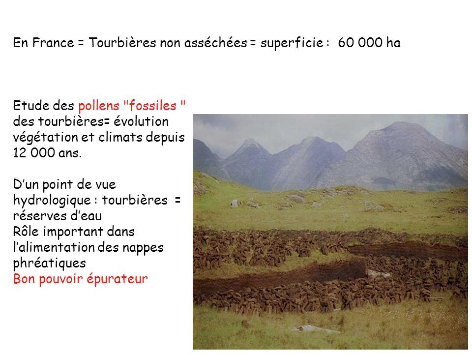 En France = Tourbières non asséchées = superficie : 60 000 ha Etude des pollens