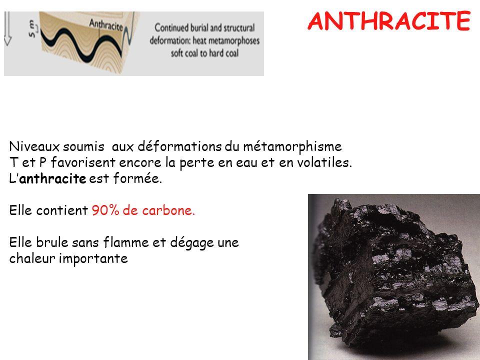 Niveaux soumis aux déformations du métamorphisme T et P favorisent encore la perte en eau et en volatiles. Lanthracite est formée. Elle contient 90% d