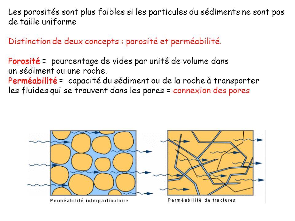 Les porosités sont plus faibles si les particules du sédiments ne sont pas de taille uniforme Distinction de deux concepts : porosité et perméabilité.
