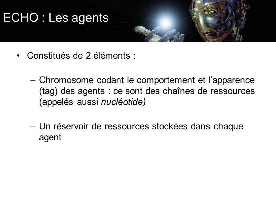 ECHO : Les agents Constitués de 2 éléments : –Chromosome codant le comportement et lapparence (tag) des agents : ce sont des chaînes de ressources (ap