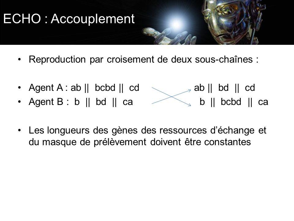 ECHO : Accouplement Reproduction par croisement de deux sous-chaînes : Agent A : ab || bcbd || cd ab || bd || cd Agent B : b || bd || ca b || bcbd ||