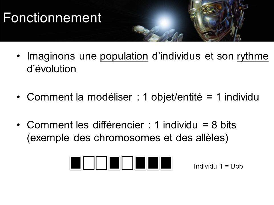 Fonctionnement Imaginons une population dindividus et son rythme dévolution Comment la modéliser : 1 objet/entité = 1 individu Comment les différencie