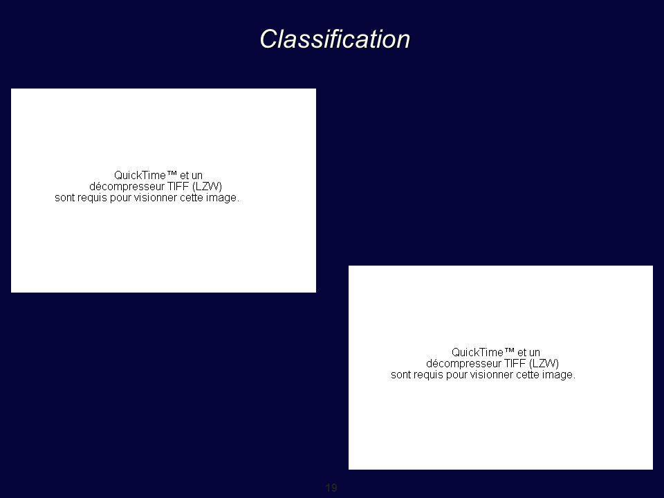 19 Classification