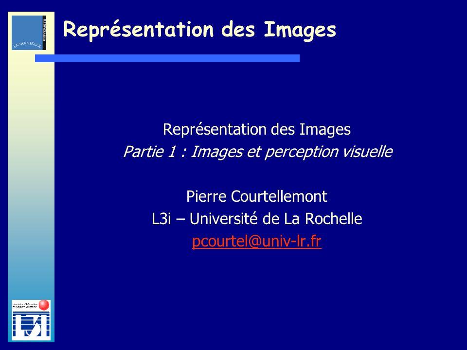 Laboratoire dInformatique et dImagerie Industrielle Représentation des Images Partie 1 : Images et perception visuelle Pierre Courtellemont L3i – Univ