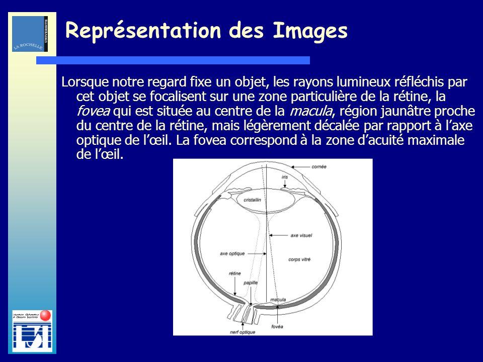 Laboratoire dInformatique et dImagerie Industrielle Lorsque notre regard fixe un objet, les rayons lumineux réfléchis par cet objet se focalisent sur