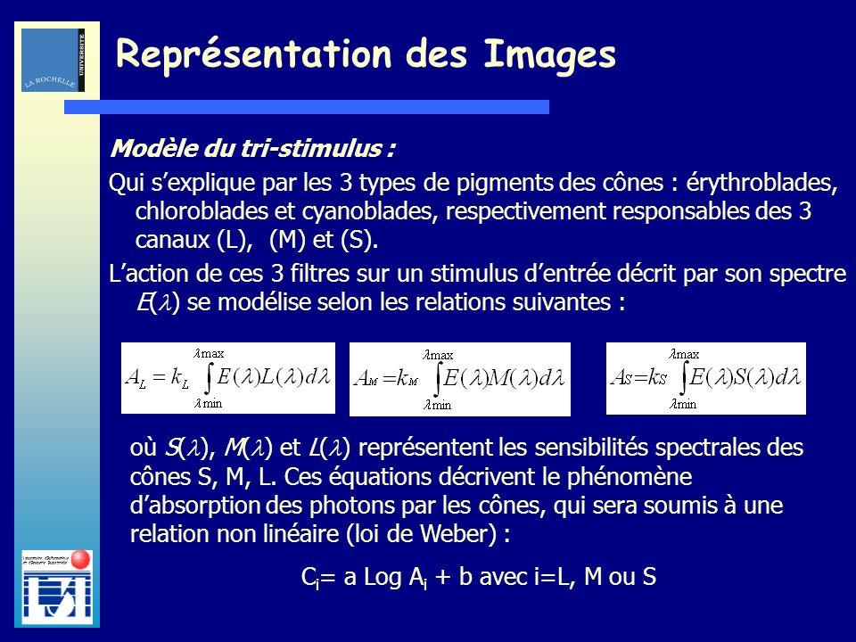 Laboratoire dInformatique et dImagerie Industrielle Modèle du tri-stimulus : Qui sexplique par les 3 types de pigments des cônes : érythroblades, chlo