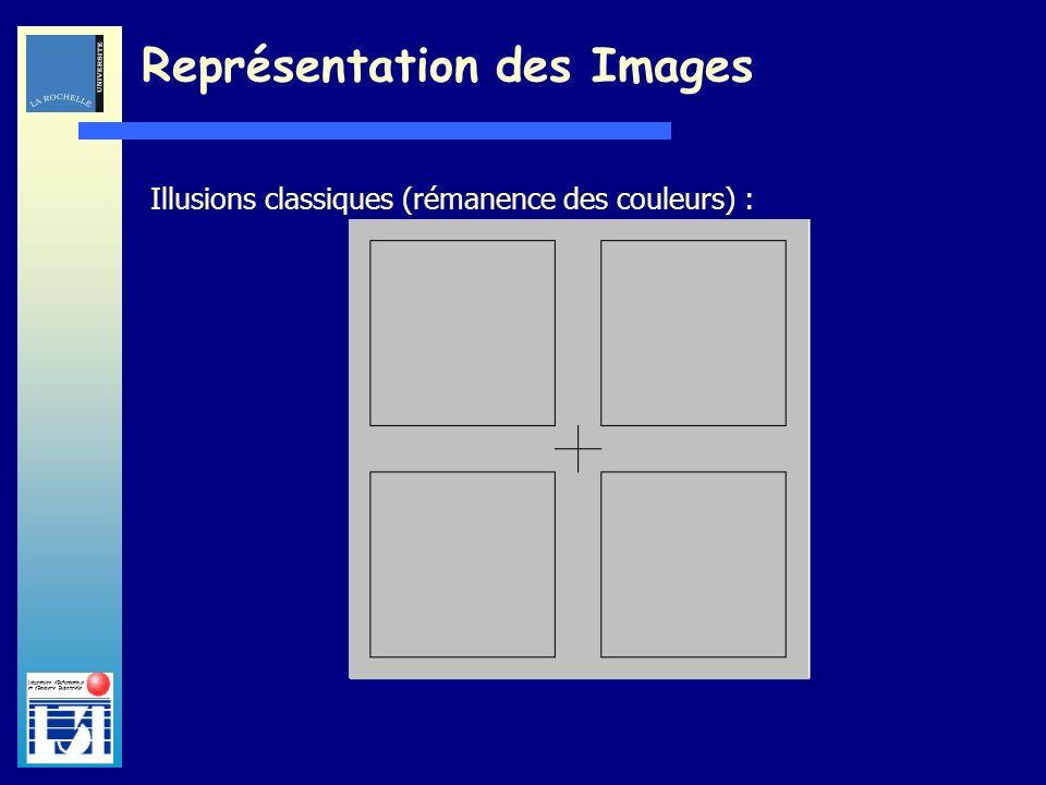 Laboratoire dInformatique et dImagerie Industrielle Illusions classiques (rémanence des couleurs) : Représentation des Images