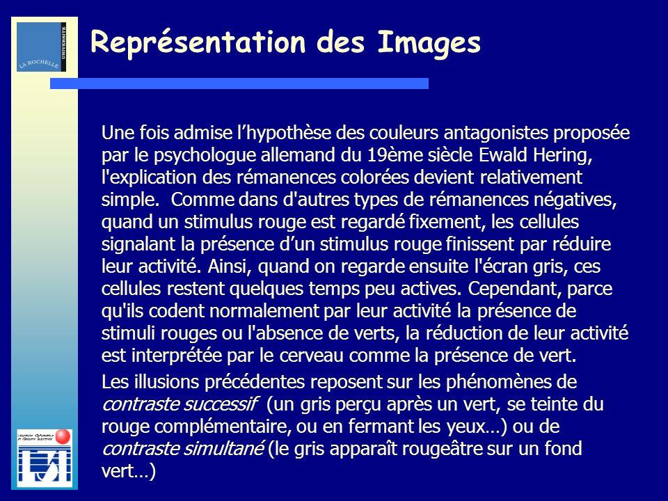 Laboratoire dInformatique et dImagerie Industrielle Une fois admise lhypothèse des couleurs antagonistes proposée par le psychologue allemand du 19ème