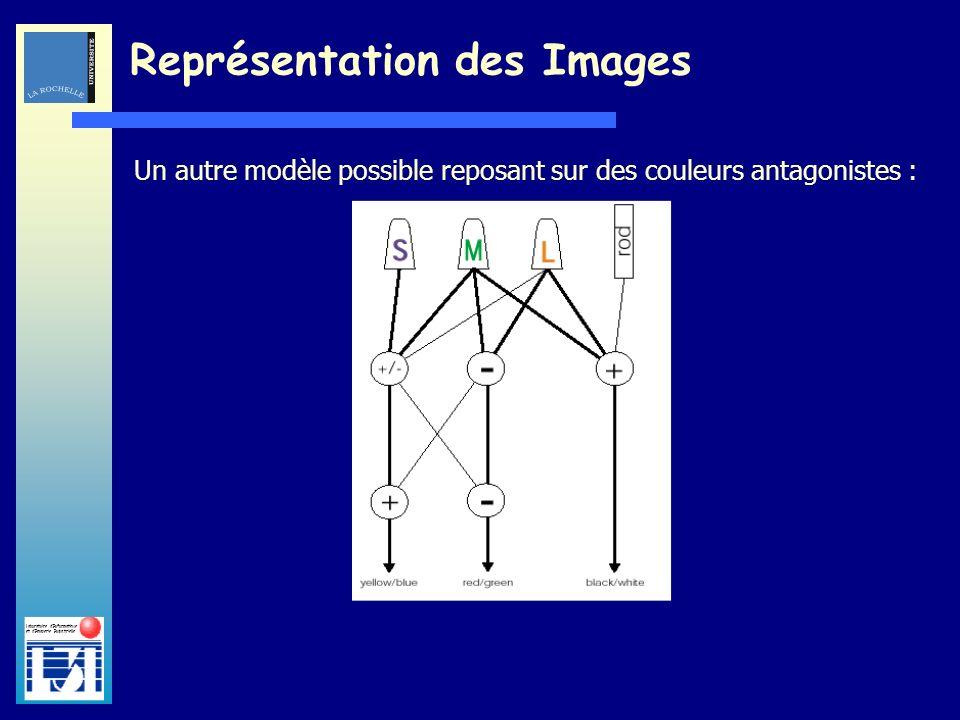 Laboratoire dInformatique et dImagerie Industrielle Un autre modèle possible reposant sur des couleurs antagonistes : Représentation des Images