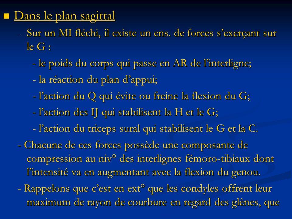 Dans le plan sagittal Dans le plan sagittal - Sur un MI fléchi, il existe un ens. de forces sexerçant sur le G : - le poids du corps qui passe en AR d