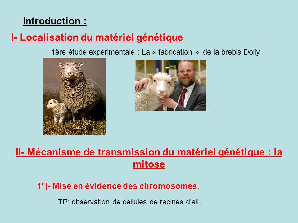 Introduction : I- Localisation du matériel génétique 1ère étude expérimentale : La « fabrication » de la brebis Dolly II- Mécanisme de transmission du