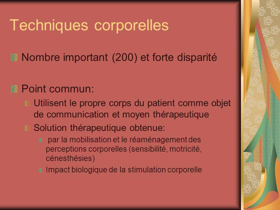 Techniques corporelles Nombre important (200) et forte disparité Point commun: Utilisent le propre corps du patient comme objet de communication et mo