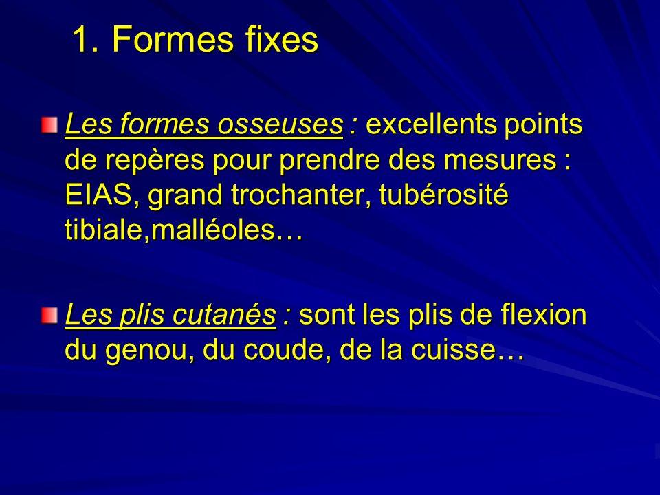 1. Formes fixes 1. Formes fixes Les formes osseuses : excellents points de repères pour prendre des mesures : EIAS, grand trochanter, tubérosité tibia