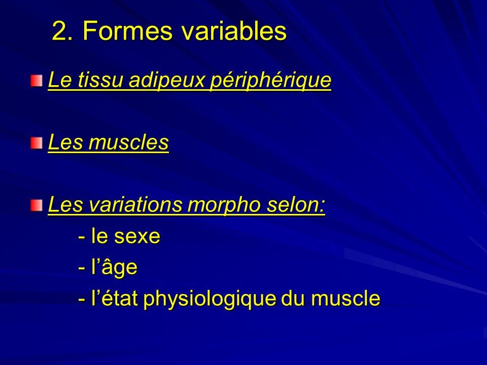 2. Formes variables 2. Formes variables Le tissu adipeux périphérique Les muscles Les variations morpho selon: - le sexe - lâge - létat physiologique